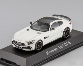 Mercedes-AMG GT R (white)