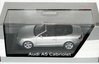 AUDI A5 Cabriolet (2009), серебристый