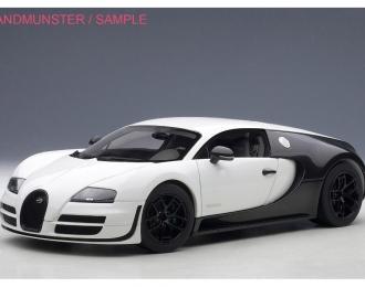 BUGATTI Veyron Super Sport Pur Blanc Edition (2012), matt white / black carbon