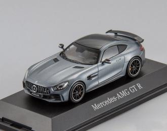 Mercedes-AMG GT R (grey)
