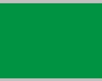 Декаль Цветовое поле (зеленый), 195x85