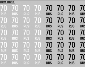 Набор декалей Дублирующие знаки России Томская область (100х70)