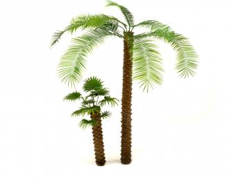 Ствол финиковой пальмы, размер S