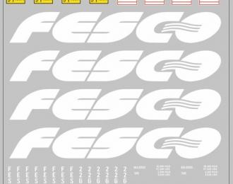 Набор декалей 0216 Контейнеры FESCO (вариант 1), белый (200х140)