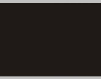 Декаль Цветовое поле (черный), 195x85