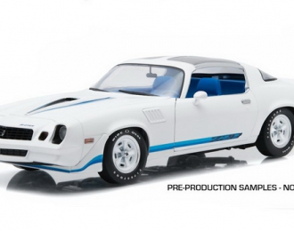 CHEVROLET Camaro Z28 1979 White with Blue Stripes (T-Tops)