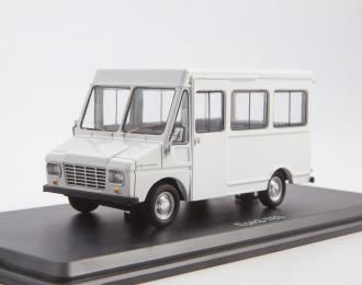 ЕРАЗ-763, серый