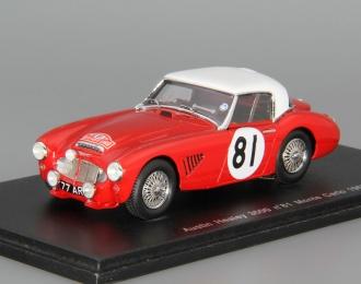 AUSTIN Healey 3000 #81 Monte Carlo (1963), red / white