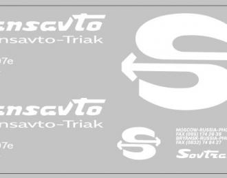 Набор декалей Sovtransavto-BRYNSK для МАЗ-9758 (100х290)