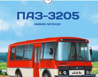 Павловский автобус-3205, Наши автобусы 2