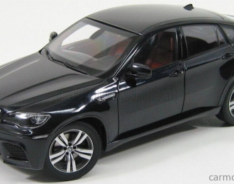 BMW X6M E71M 2010