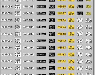 Набор декалей Номерные знаки Екатеринбург и область грузовики, трактора, прицепы (100х140)
