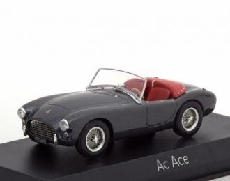 AC Ace 1957 Grey Metallic