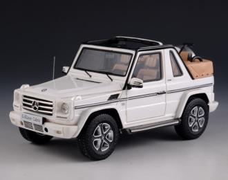 MERCEDES-BENZ G500 Cabriolet Final Edition 4х4 (W463) (открытый) 2014 White