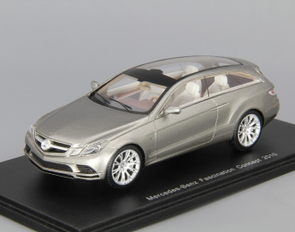 MERCEDES-BENZ Fascination Concept (2010), silver