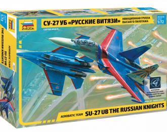 Сборная модель Су-27 Русские витязи