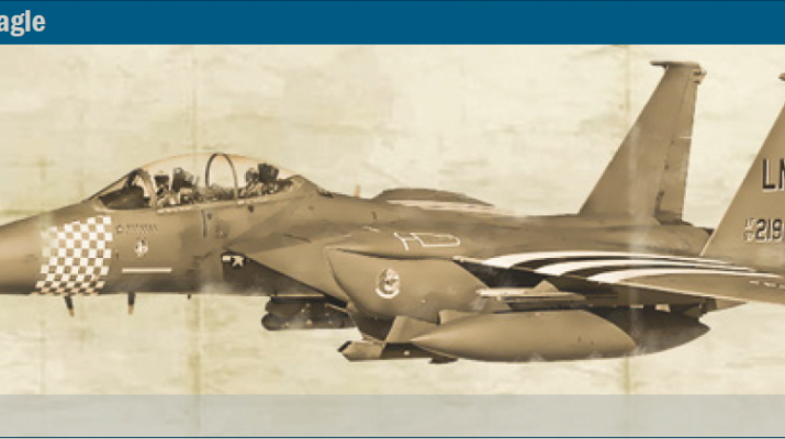 Сборная модель F-15E Strike Eagle