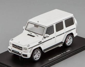 MERCEDES-BENZ G63 AMG (2014), white