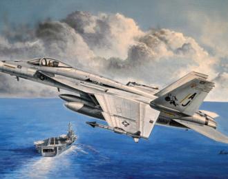 Сборная модель F/A-18E Super Horne ( 1:48,  HobbyBoss)
