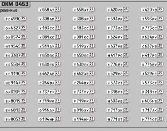 Набор декалей Номерные знаки России Приморский край (100х70)