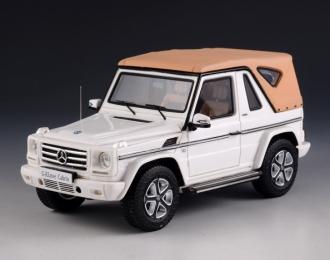 MERCEDES-BENZ G500 Cabriolet Final Edition 4х4 (W463) (закрытый) 2014 White