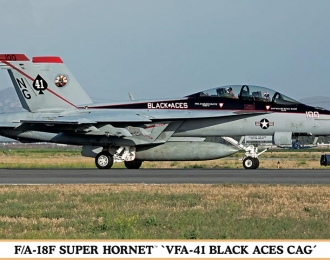 Сборная модель FA18F Super Hornet VFA41 Black Aces Limited Edition