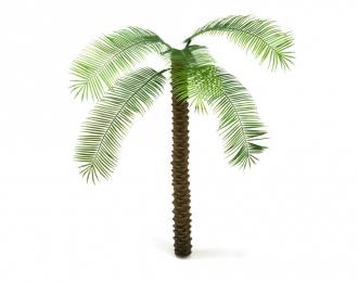 Ствол финиковой пальмы, размер XS