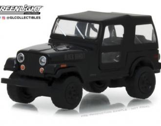 JEEP CJ-7 4х4 1976 Black