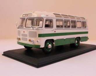 Павловский автобус 672, бело-зелёный
